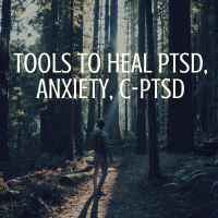 Tools to Heal Anxiety, PTSD, Complex PTSD & Applying The Law of Attraction